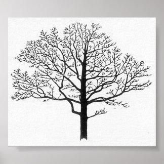 Silueta del árbol poster