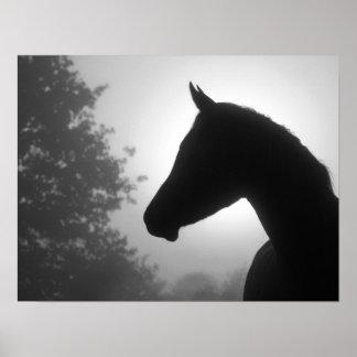 Silueta del caballo en blanco y negro posters
