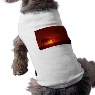 Silueta del caballo en la puesta del sol camisetas de perrito