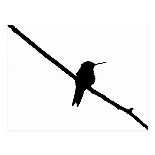 Silueta del colibrí postal