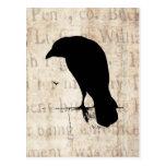 Silueta del cuervo - cuervos y cuervos retros del  postales