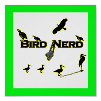 Silueta del empollón del pájaro posters
