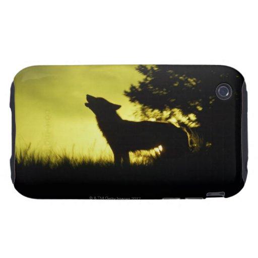 Silueta del lobo que grita funda though para iPhone 3