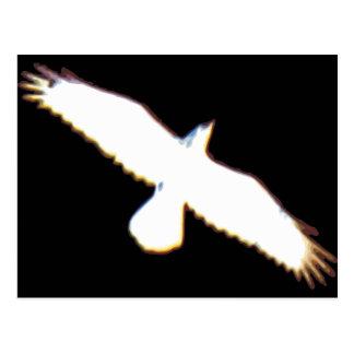 Silueta del pájaro de vuelo postales
