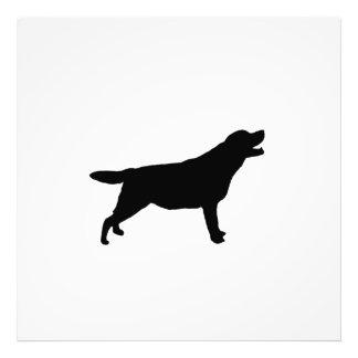 Silueta del perro de caza de Labrador Retriver Foto