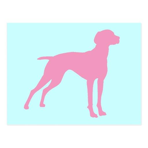 Silueta del perro de Vizsla (rosa) Tarjeta Postal