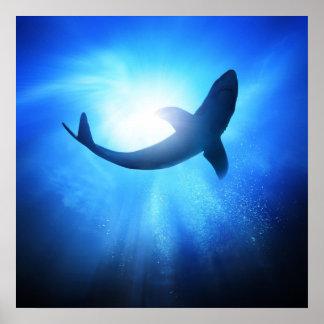 Silueta del tiburón del océano profundo póster