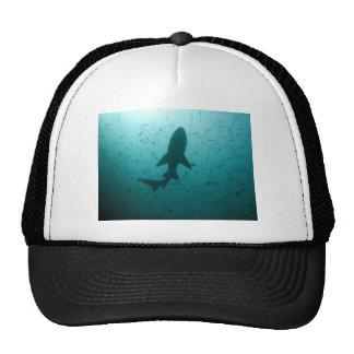 Silueta del tiburón gorro de camionero