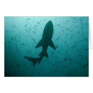 Silueta del tiburón tarjeta de felicitación