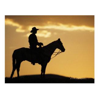 Silueta del vaquero a caballo en la puesta del sol postal