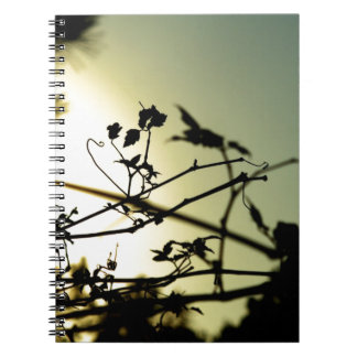 Silueta en el cuaderno de la puesta del sol