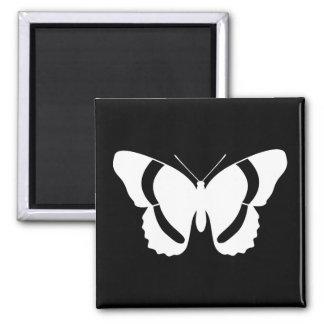 Silueta exquisita del almirante blanco mariposa imán cuadrado