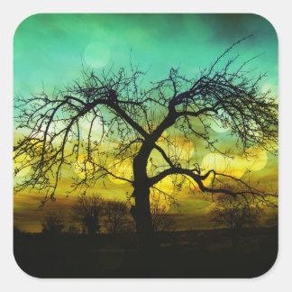 Silueta hermosa del árbol en la aguamarina de pegatina cuadrada