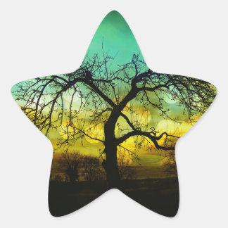Silueta hermosa del árbol en la aguamarina de pegatina en forma de estrella
