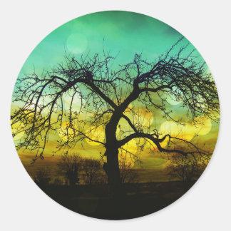 Silueta hermosa del árbol en la aguamarina de pegatina redonda