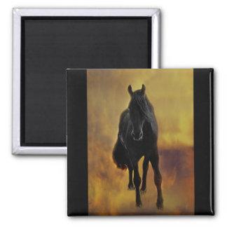 Silueta negra del caballo imán cuadrado