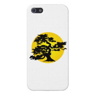 Silueta Sun de los bonsais iPhone 5 Carcasa
