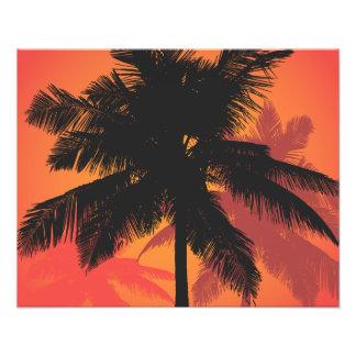 Siluetas de la puesta del sol de las palmeras impresiones fotograficas