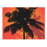 Siluetas de la puesta del sol de las palmeras postales