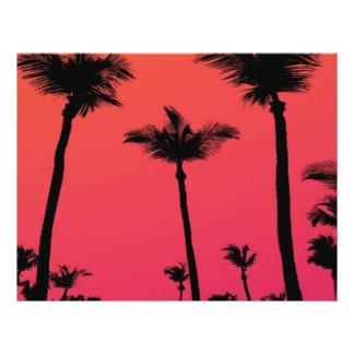"""Siluetas de las palmeras en la puesta del sol folleto 8.5"""" x 11"""""""