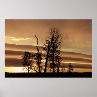 Siluetas de los árboles del invierno con salida póster