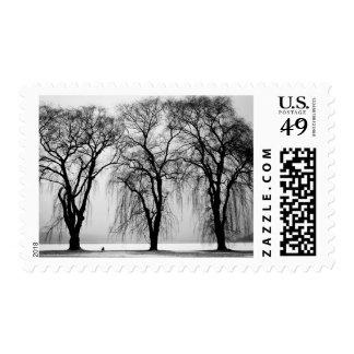 Siluetas de los árboles en invierno sellos