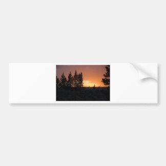 Siluetas del árbol en la puesta del sol pegatina de parachoque