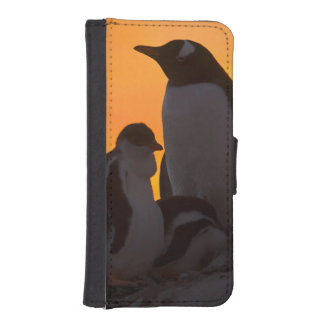 Siluetean a un adulto y un polluelo del pingüino billetera para teléfono
