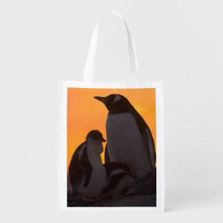Siluetean a un adulto y un polluelo del pingüino bolsas de la compra