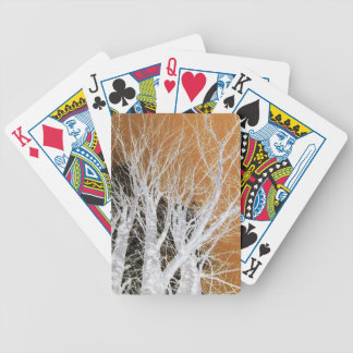 Silver Alder Tree Art Bicycle Playing Cards