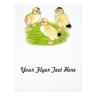 Silver Appleyard Ducklings Flyer