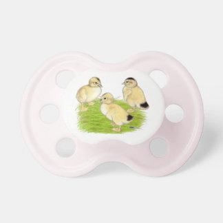 Silver Appleyard Ducklings Pacifiers
