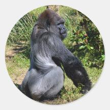 Silver back gorilla round sticket classic round sticker