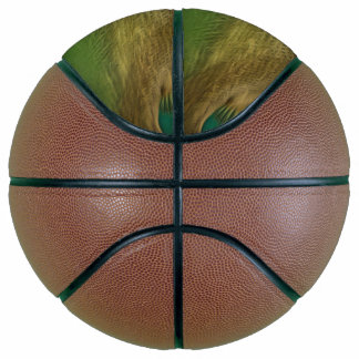 Silver Beauty Basketball