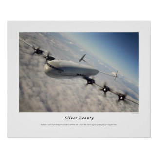 Silver Beauty Poster