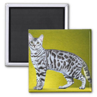 Silver Bengal Stamp 2 Inch Square Magnet