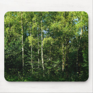 Silver Birch Mouse Pads