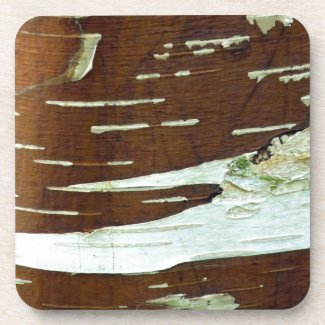 Silver Birch Natural Tree Bark Beverage Coaster