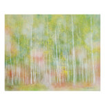 Silver Birch Trees Posters
