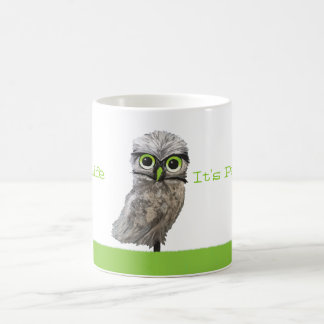 Silver Burrowing Owl Cape Coral Florida Artwork Coffee Mug