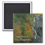 Silver Cascade NH   Magnet