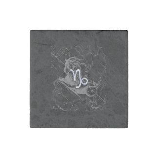 Silver Chrome like Capricorn Zodiac Sign Hevelius Stone Magnet