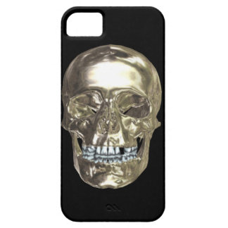 Silver Chrome Skull iPhone 5 Case iPhone 5 Cases