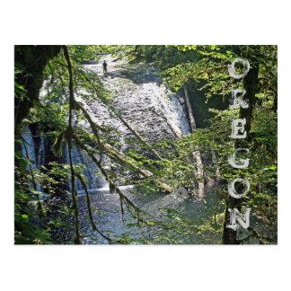Silver Falls 4 Postcard