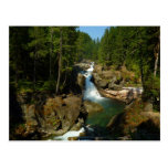 Silver Falls at Mount Rainier National Park Postcard