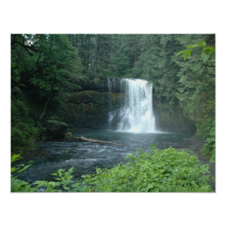 Silver Falls on Canvas Poster