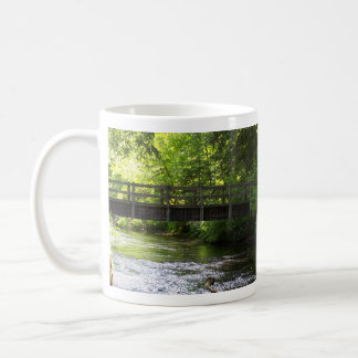 Silver Falls State Park Mug