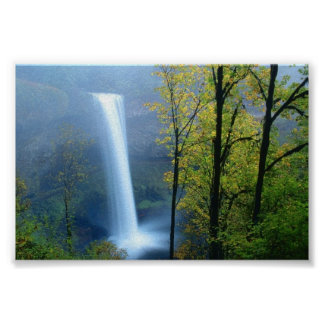 Silver Falls State Park, Oregon Poster