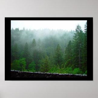 silver falls state park, oregon poster