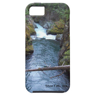 Silver Falls WA iPhone Case Cover
